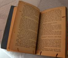 Bookworm damage